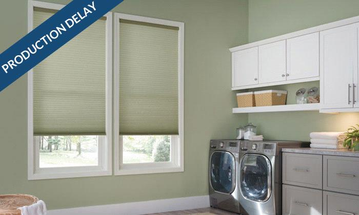 "Double Cell Light Filtering Cellular Shades Best 1/2"" Double Cell Light Filtering Shades"