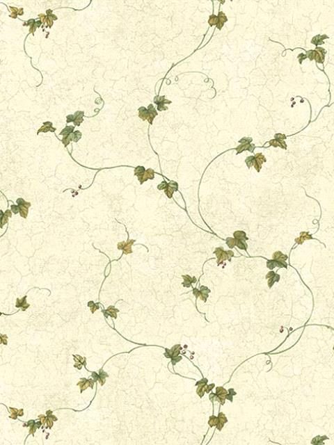 ctr21701-Wall Paper